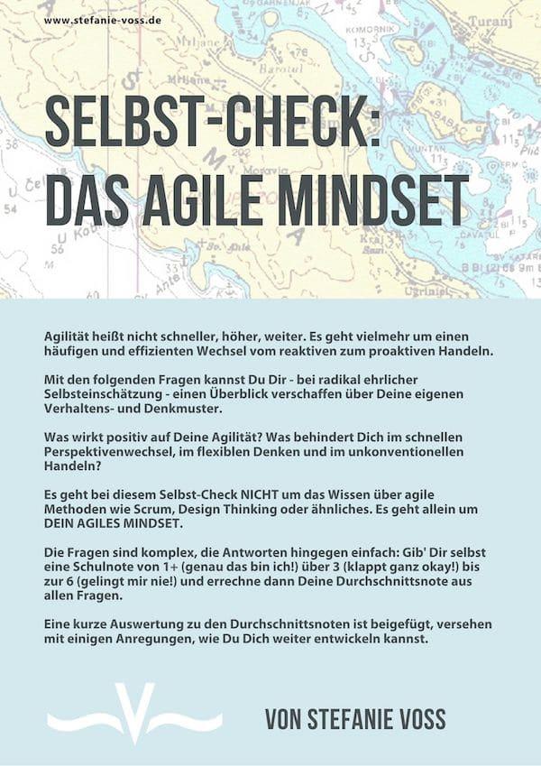 Das Agile Mindset - Selbst-Check von Stefanie Voss