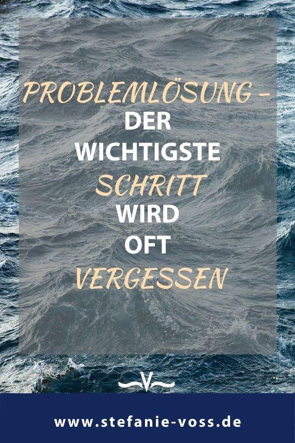Problemlösung – der wichtigste Schritt wird oft vergessen - Videoblog von Stefanie Voss